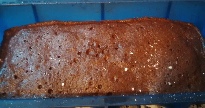 BROWNIE SIN GLUTEN DE CHOCOLATE EN Thermomix® (y al microondas)