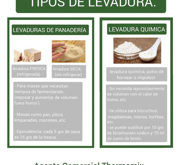 TIPOS DE LEVADURA